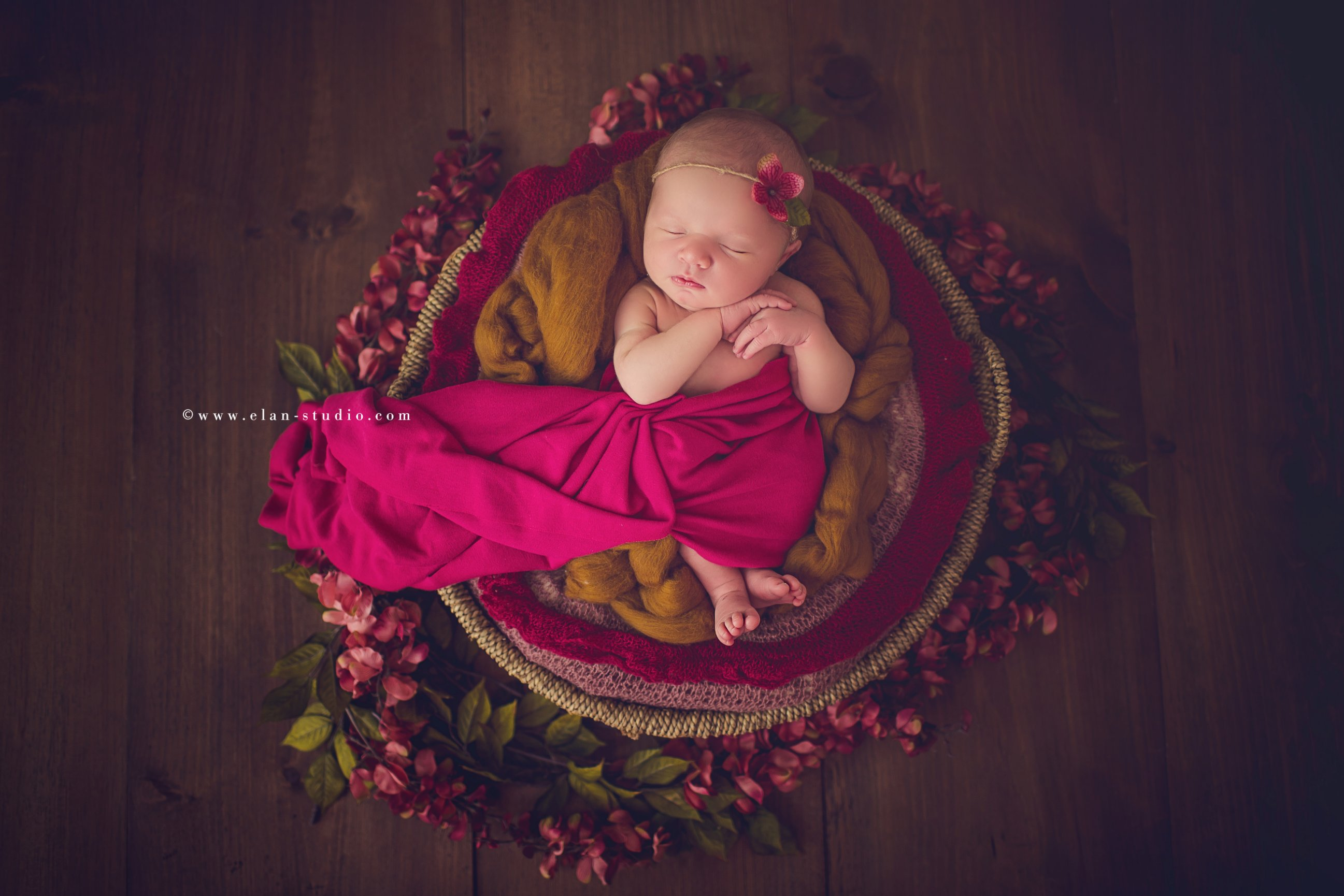 fall tones newborn baby girl with magenta and mustard blankets