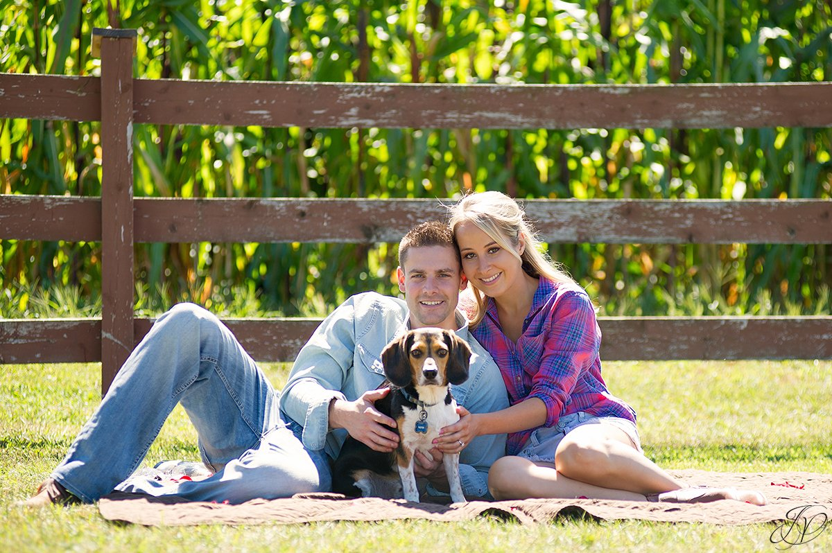 cute engagement portrait with puppy