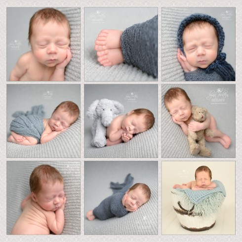 Kitchener Newborn Photographer