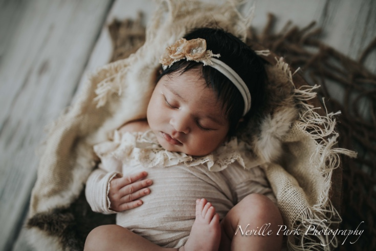 This adorable newborn baby girl neville park photography