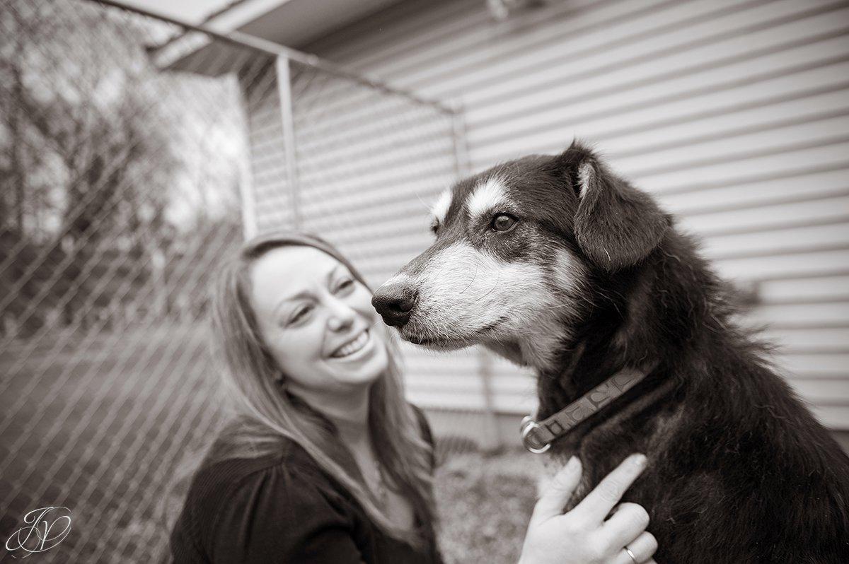happy rescued dog, dog rescue photo, rescued dog photo, canine skin disease photo, regional animal shelter