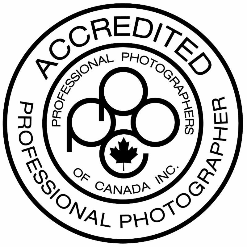 terrill bodner photography prince ge e bc canada Haida Gwaii British Columbia why choose an accredited professional photographer